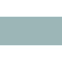 Peter Ellis FSA logo