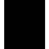 Sally Strachey logo